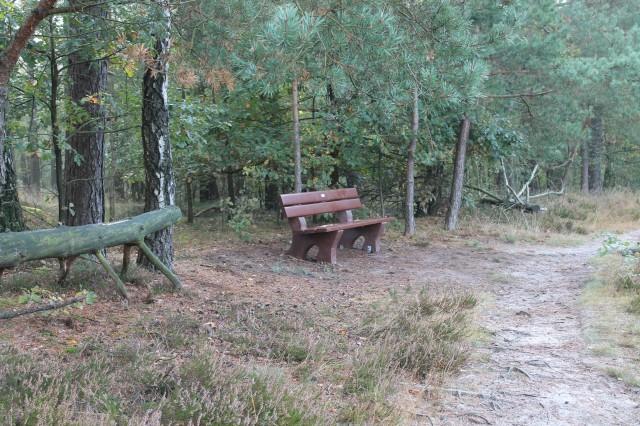 Sitzbank am Rundwanderweg