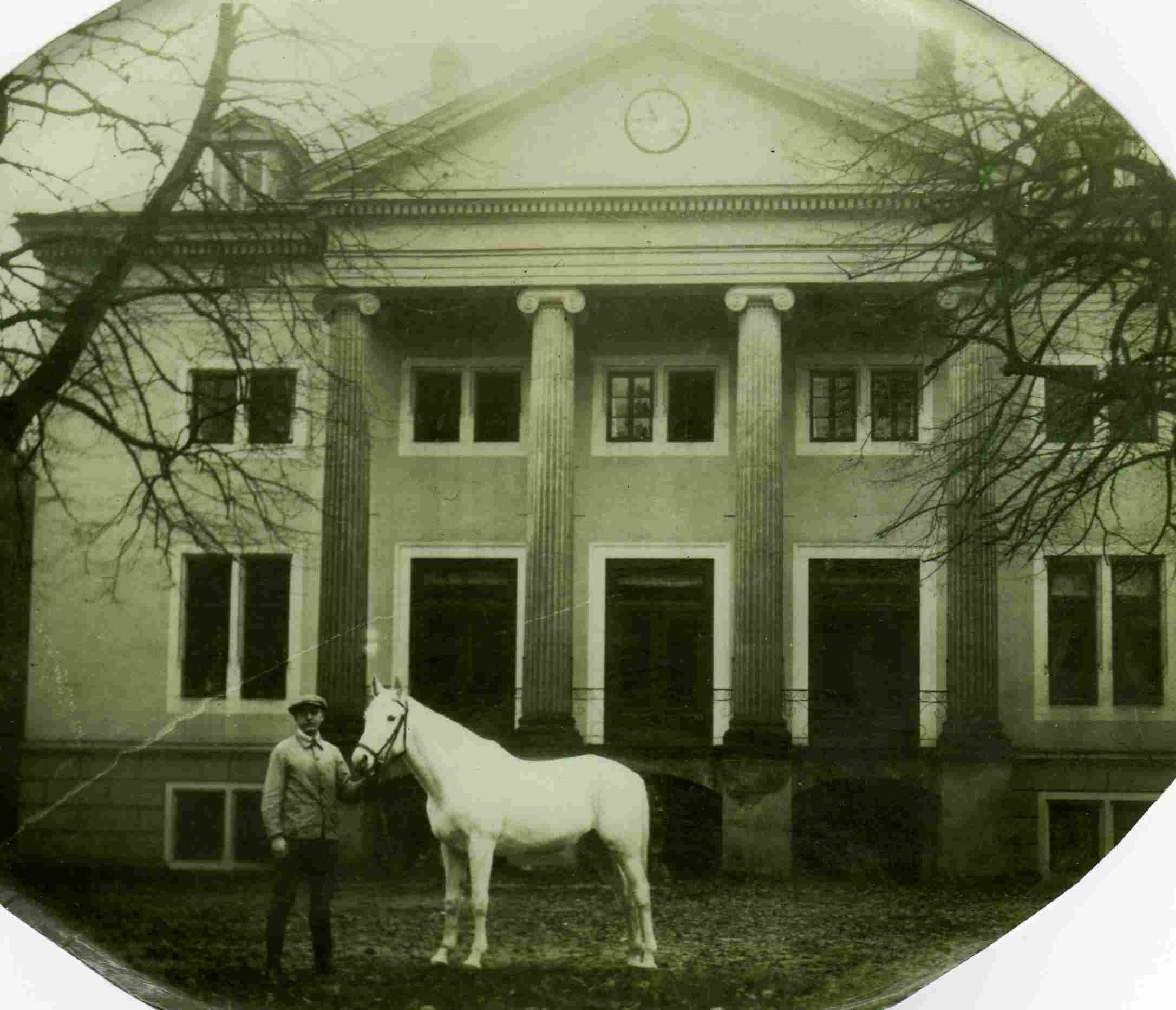 Jagdschloss Lopshorn mit Senner Hengst Tizian